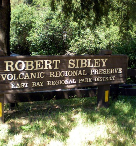Sibley Sign