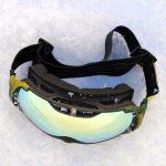 Salomon XTend Pro12 Goggles