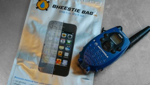 Bheestie Bag Review